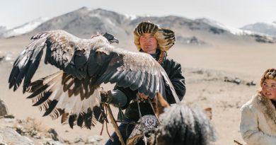 """Um homem com sua águia. Eficiência e Eficácia o que importa é a """"Caça"""""""